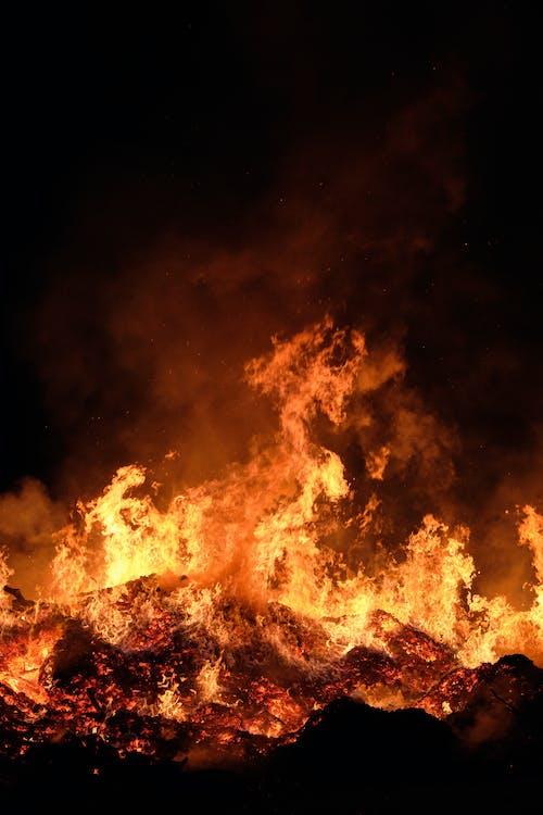 Foto profissional grátis de ardente, brasas, calor, chama