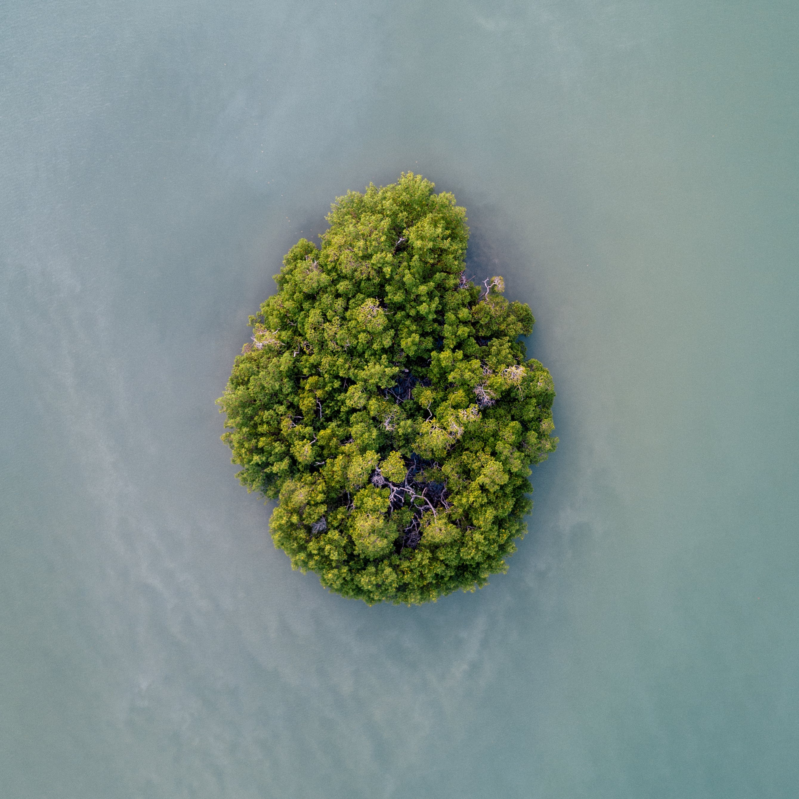 Aerial Photography of an Island Surrounded by Water