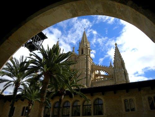 Free stock photo of Kathedrale, mallorca