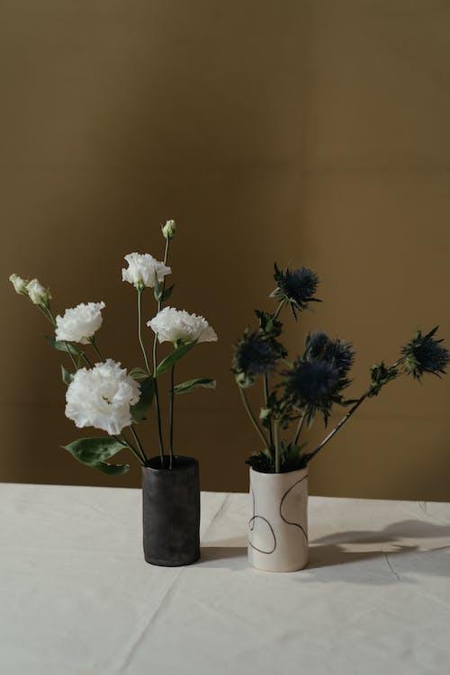 Foto profissional grátis de arranjo de flores, decoração, enfeite de flores, eríngio