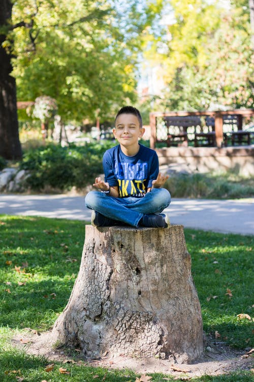 Photo of Boy Sitting on Tree Stump