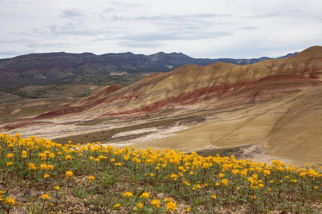 colinas pintades