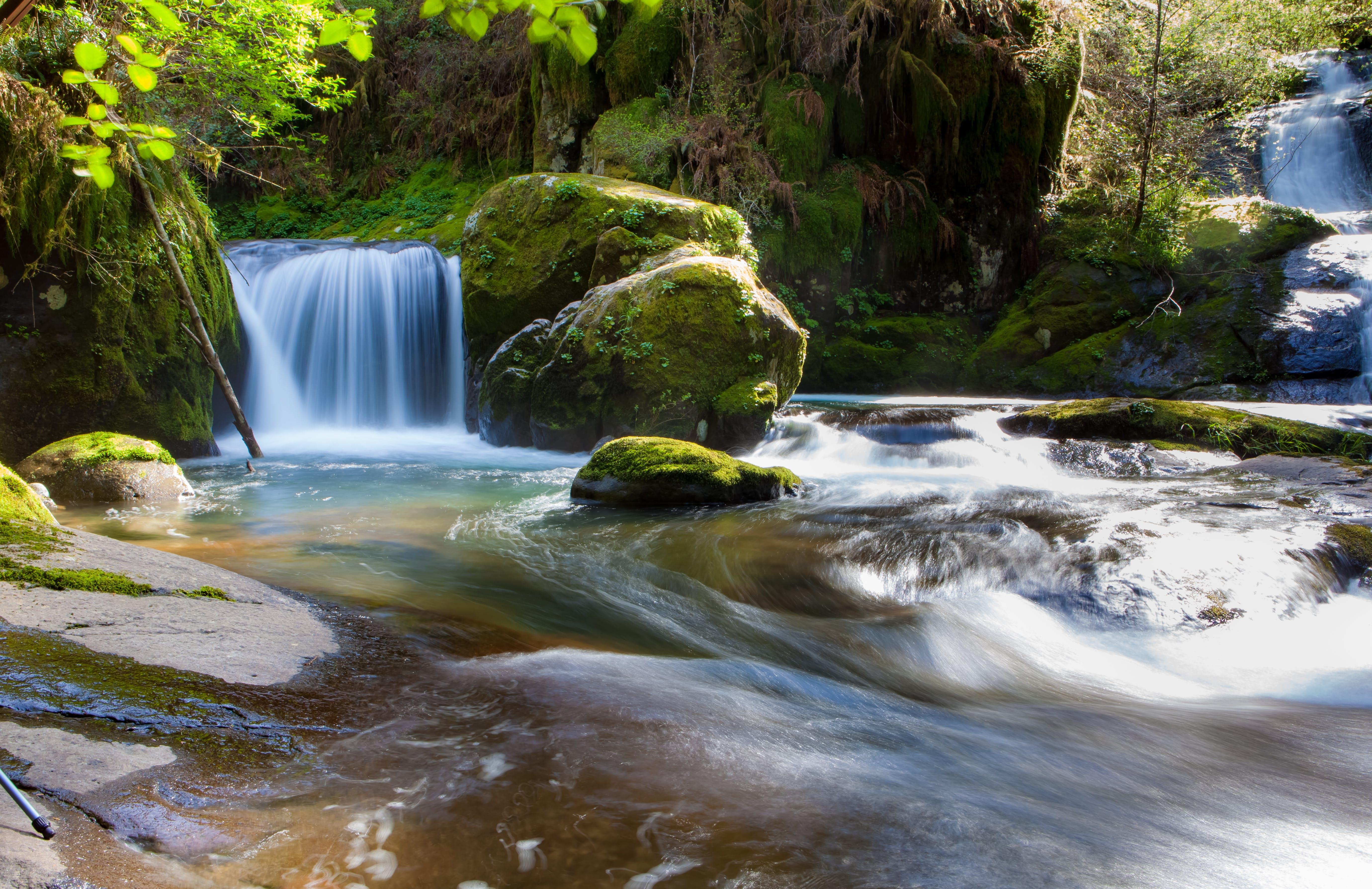 Foto profissional grátis de água, borrifar, cachoeira, cênico