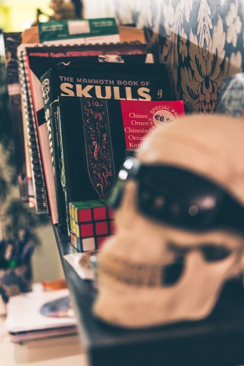 Foto stok gratis buku-buku, pustaka, rak buku, tengkorak