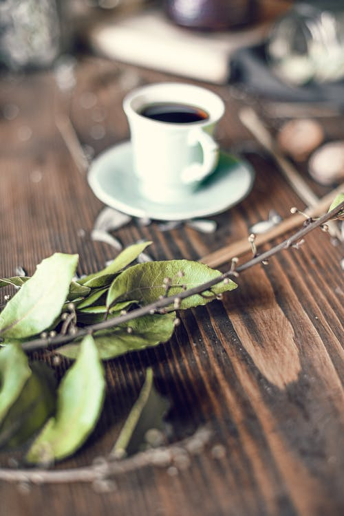 Coffee cup and dried plant leaves arranged on wooden table