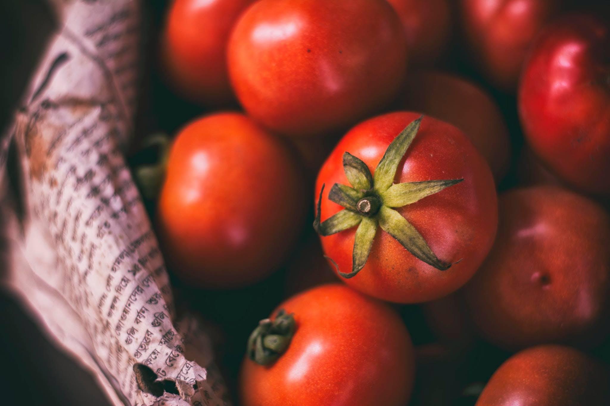 Kostenloses Stock Foto zu essen, gesund, rot, tomaten
