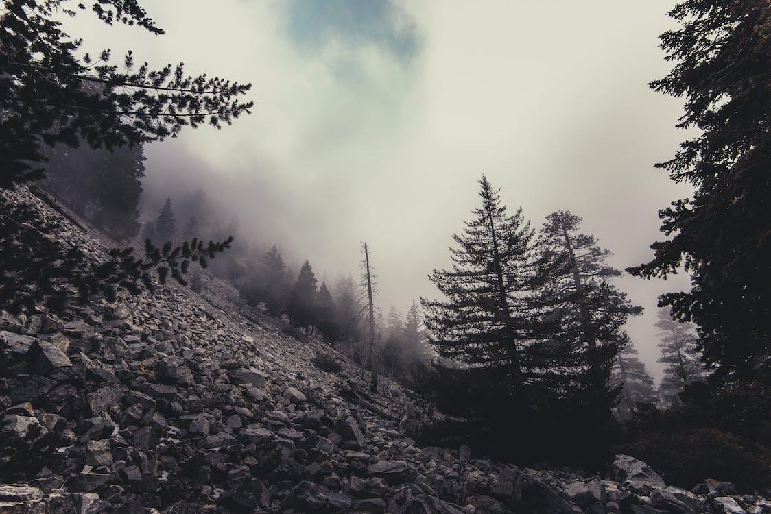 冷, 天性, 山