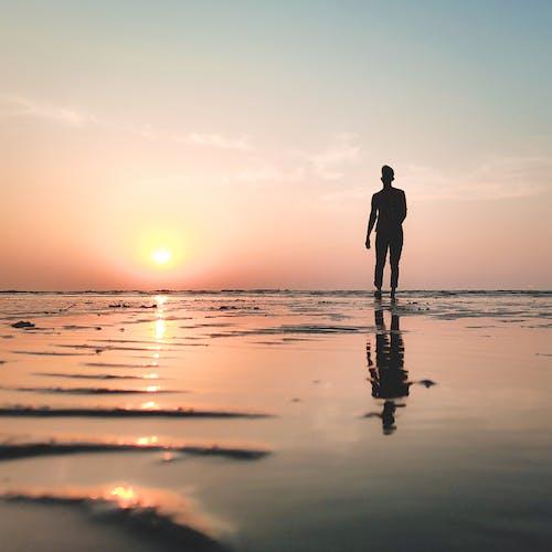 Silhouette of unrecognizable man walking on seashore at sundown