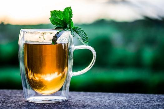 Free stock photo of cup, mug, glass, tea