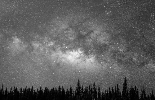 Gratis arkivbilde med astronomi, atmosfære, bartrær