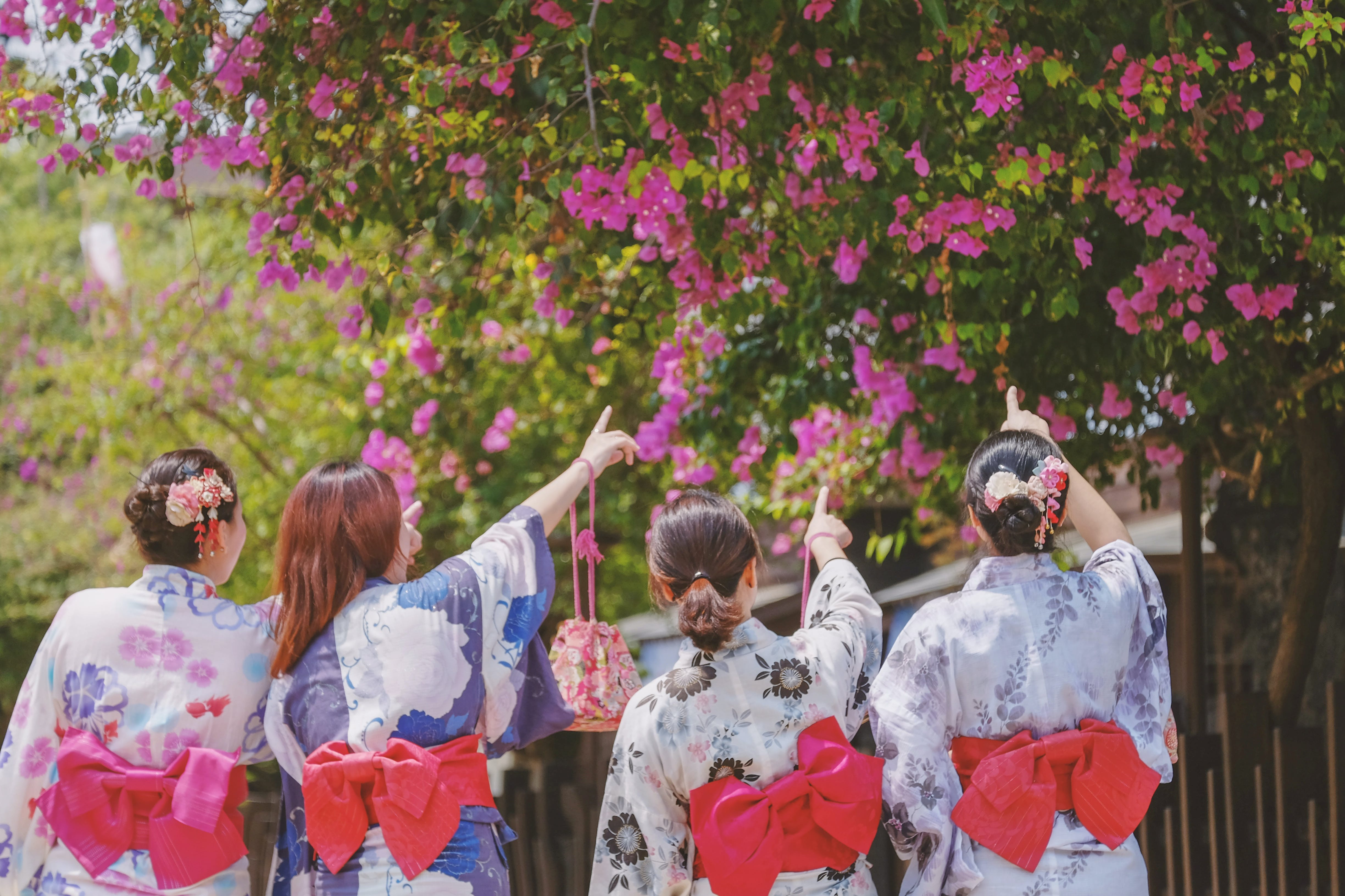 Free stock photo of flower, girls, japan, Japanese
