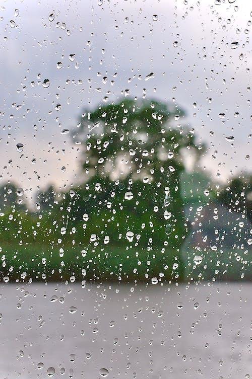 Kostenloses Stock Foto zu fenster, regen, regentropfen, tropfen