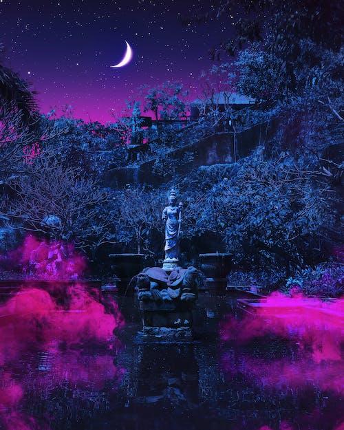 Ảnh lưu trữ miễn phí về ảnh, bầu trời đêm, bức tượng, cây