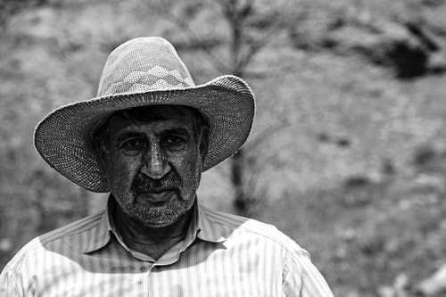 Free stock photo of black and white, dad, farmer, man