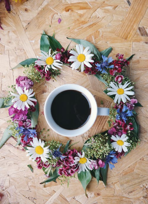 Ilmainen kuvapankkikuva tunnisteilla huomenta, kahvi, kahvikuppi, kamomilla