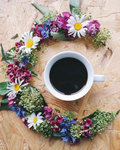 Ilmainen kuvapankkikuva tunnisteilla aromaattinen, kahvi, kahvikuppi, kamomilla