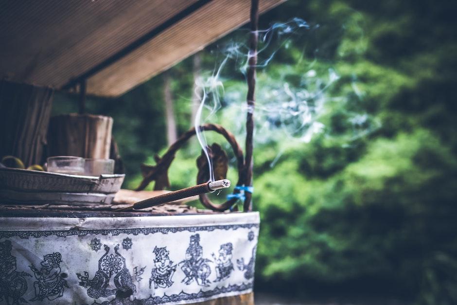 blur, close-up, environment