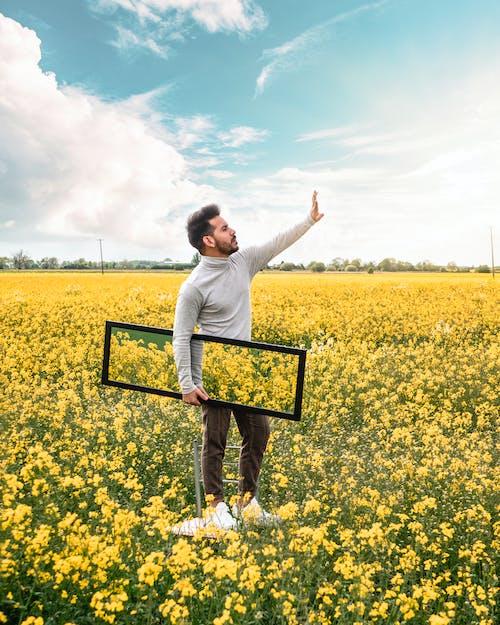 Imagine de stoc gratuită din agricultură, Anglia, bucurie