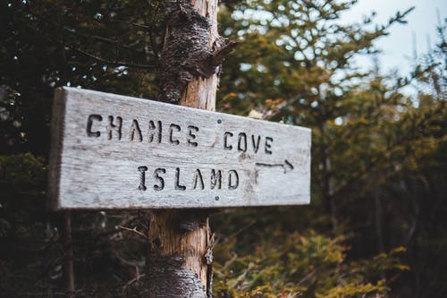 Sign on tree trunks with arrow and Chance Cove Island text