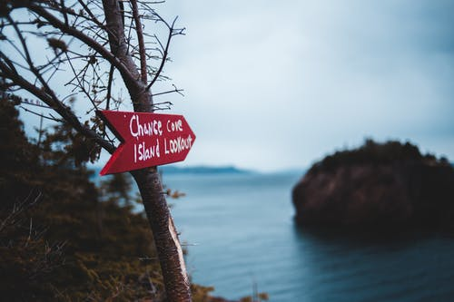 Direction sign on tree trunk near rocky sea