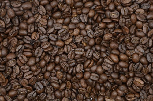 Photo of Roasted Coffee Beans