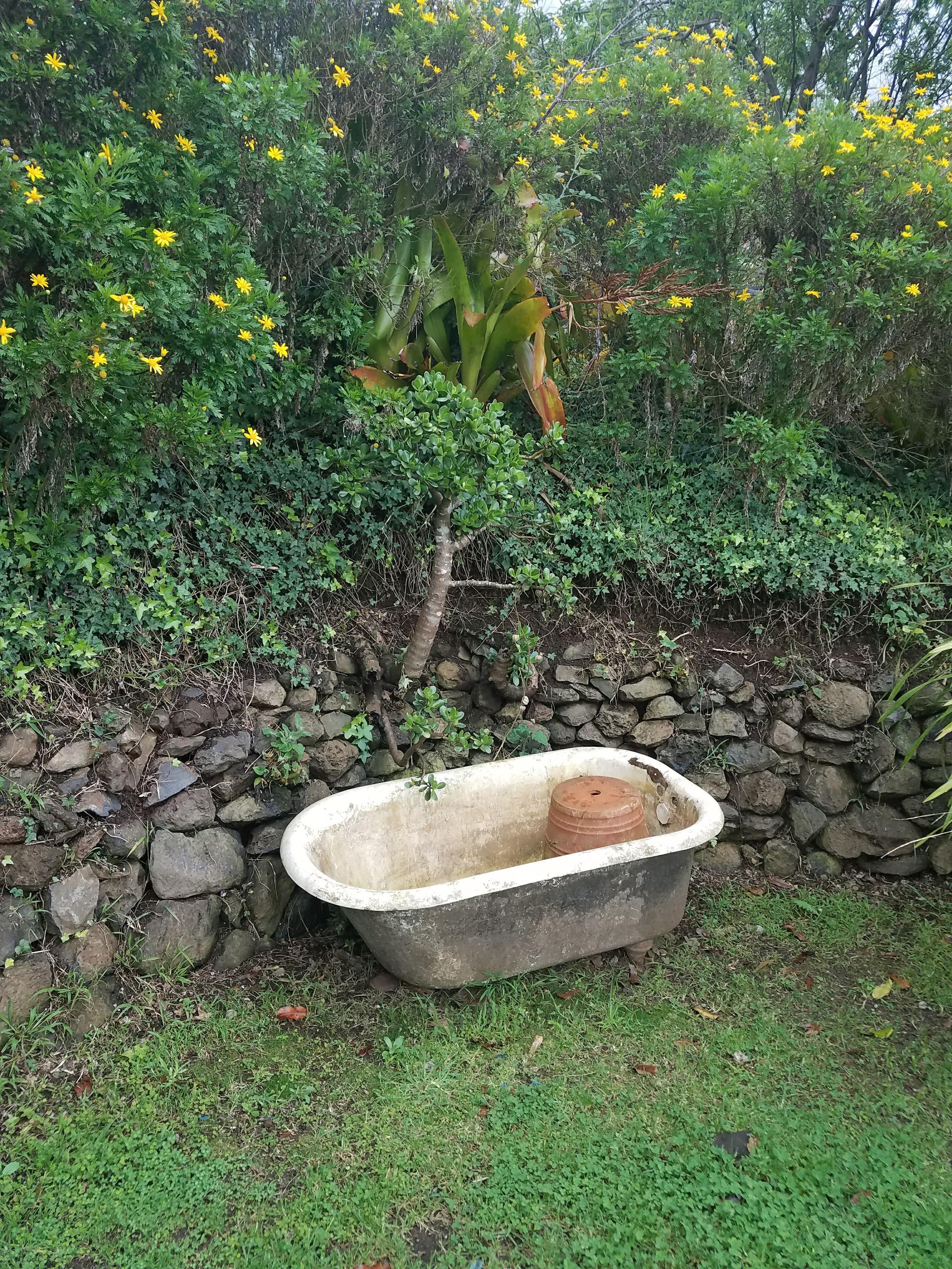 Elegant Badewanne Im Garten Sammlung Von Kostenloser Pattern