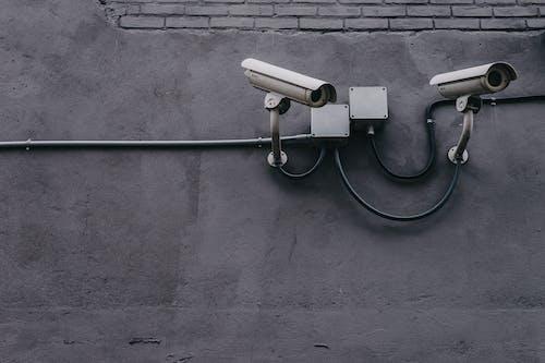 Gratis lagerfoto af beskyttelse af personlige oplysninger, beskyttet, cyber, data
