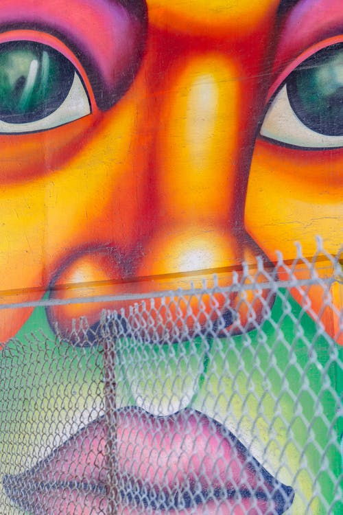 Human Face Wall Painting