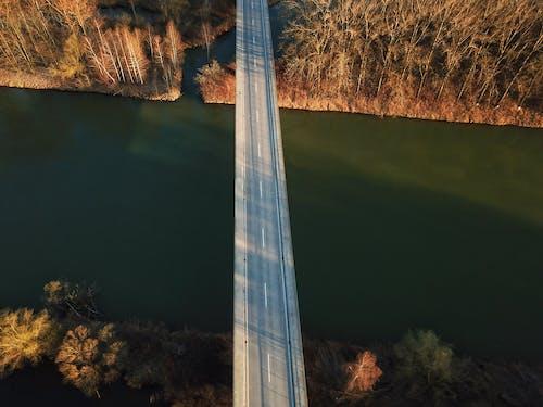 Bridge with empty road over river between autumn trees