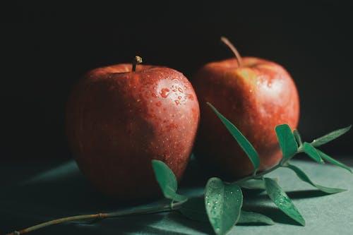 Gratis lagerfoto af æble, Apple, aroma, arrangement