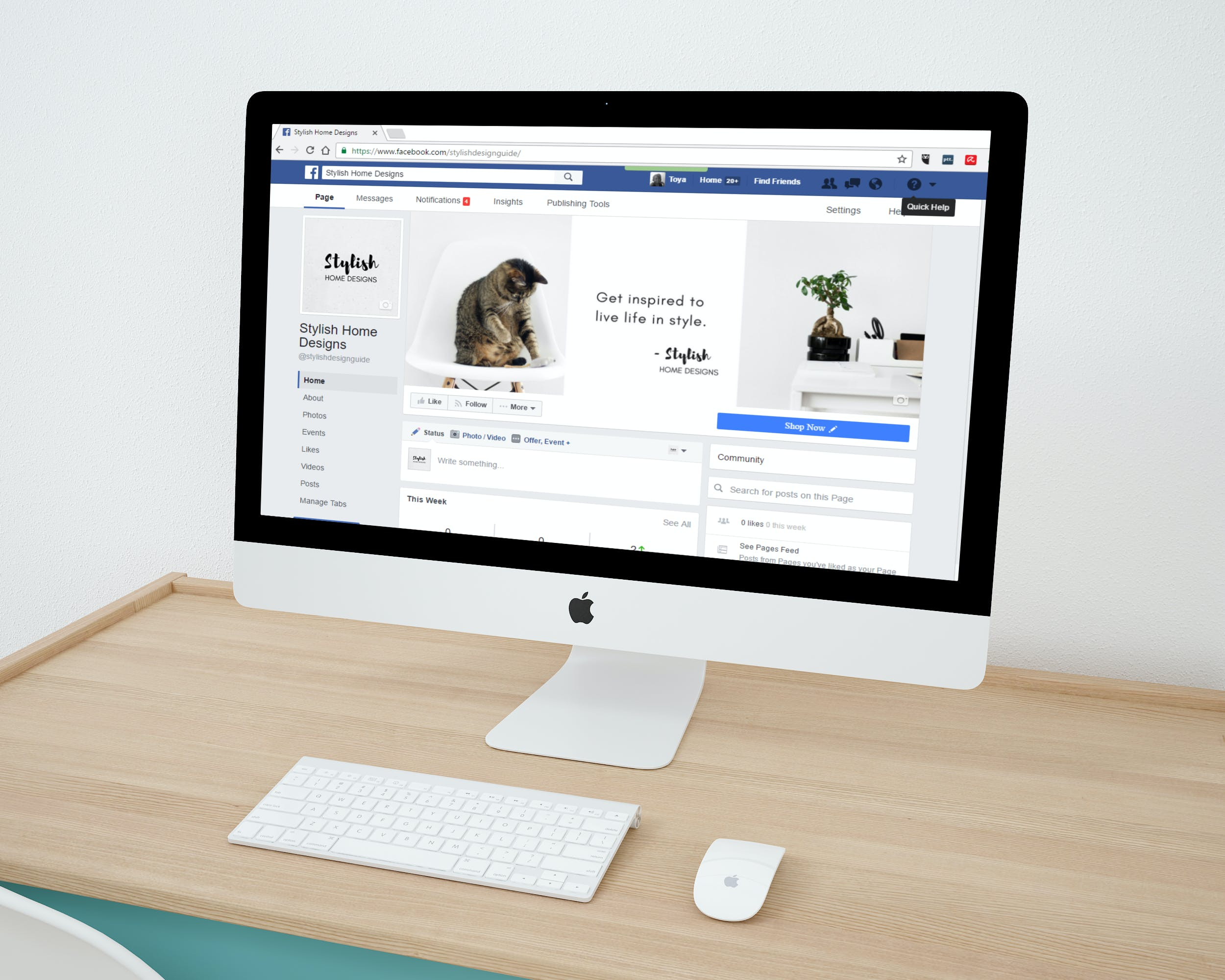 Free stock photo of apple, cat, desktop, facebook
