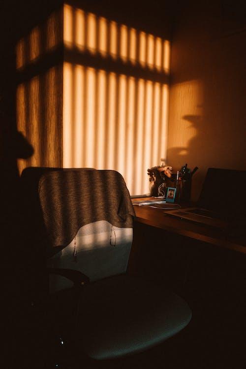 光, 光線, 室內, 家人 的 免費圖庫相片