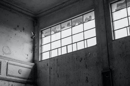 Darmowe zdjęcie z galerii z latanie, okno, opuszczony, opuszczony budynek