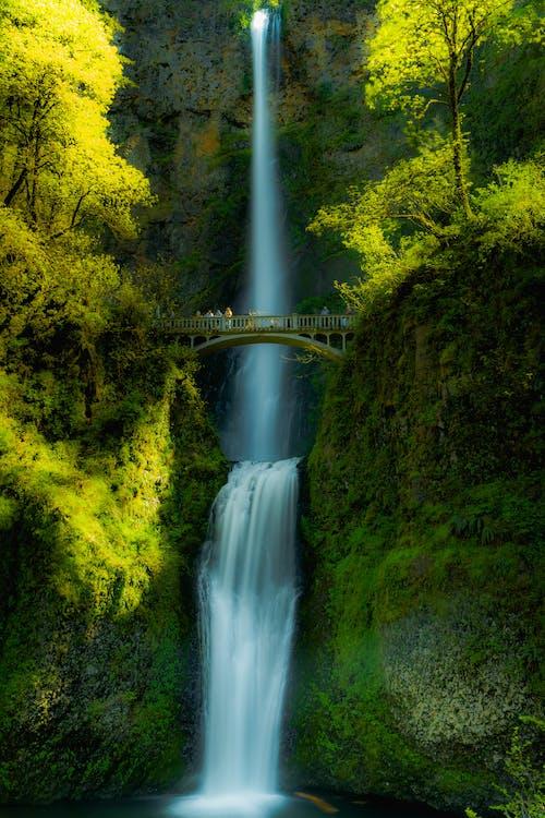 Amazing waterfall behind bridge in nature