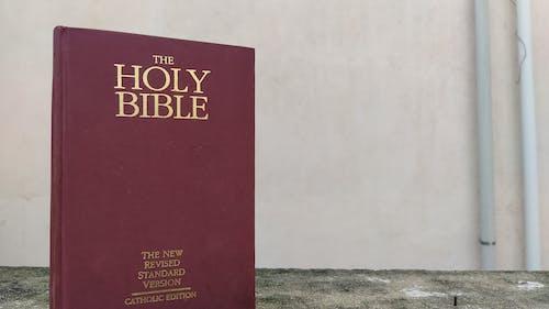 Fotos de stock gratuitas de Biblia, fondo, sagrada biblia