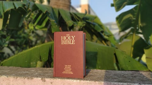 Fotos de stock gratuitas de Biblia, fondo, libro sagrado