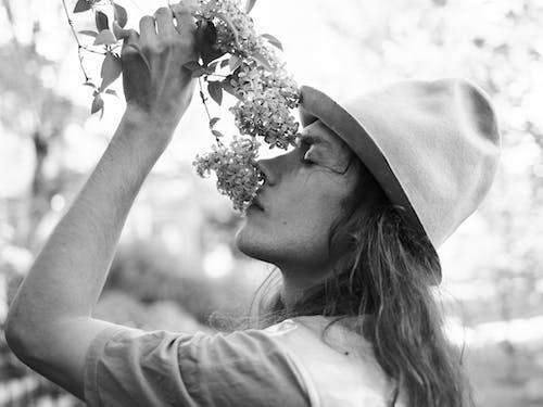 Gratis lagerfoto af alene, androgyn, aroma, blomst