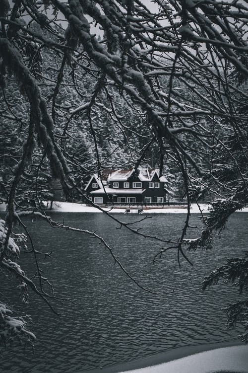 Wooden cottage in forest near lake