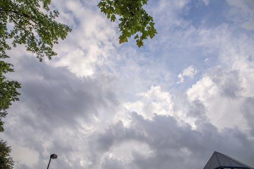 卡罗来纳天空, 天空, 背景 的 免费素材图片