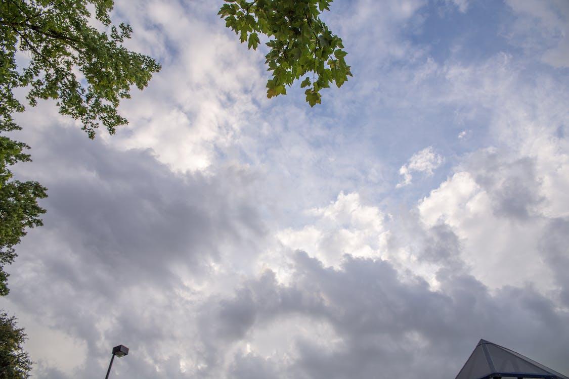 Foto profissional grátis de carolina sky, céu, conhecimento