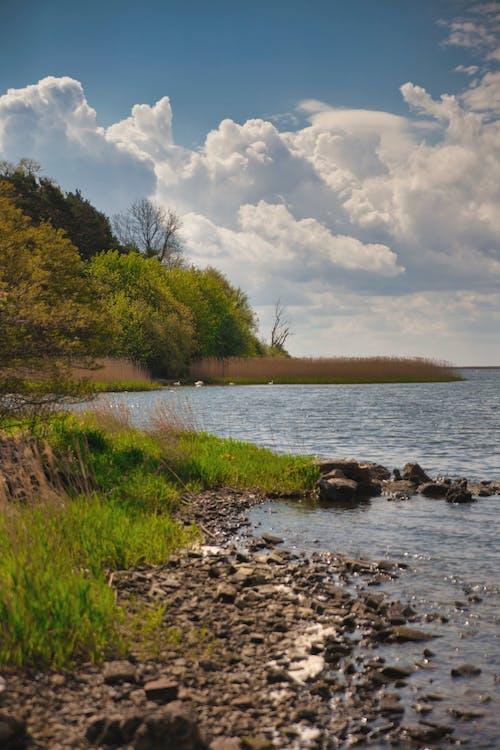 Free stock photo of beatiful landscape, coast, lake, seside