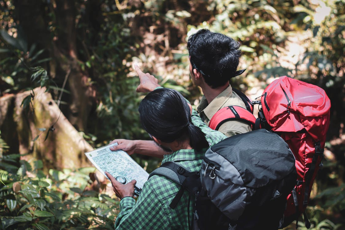 Male tourists with map standing in forest