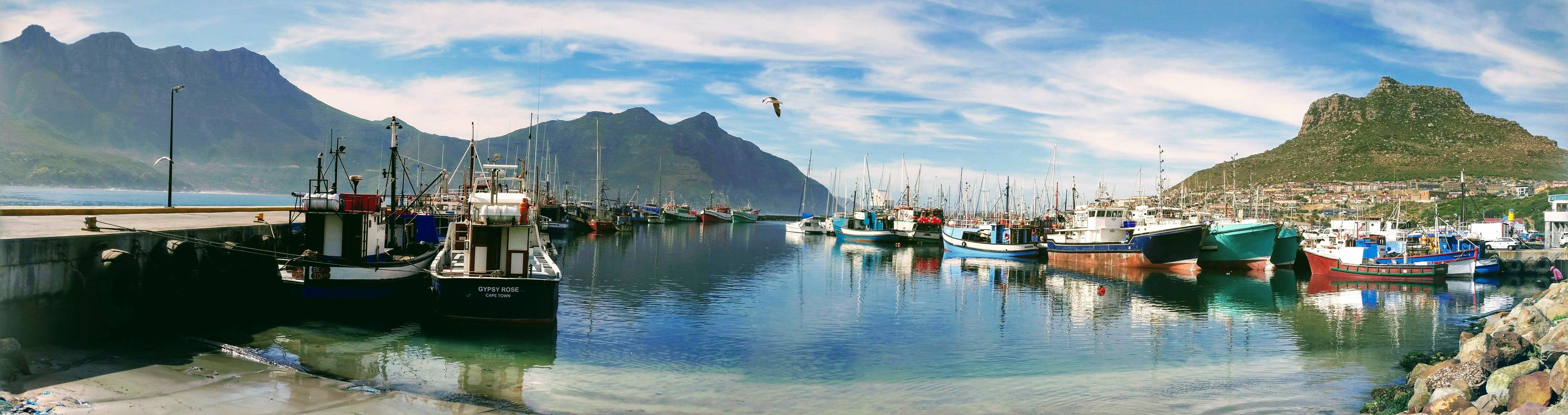 Základová fotografie zdarma na téma čluny, hout bay, Kapské město, panoráma