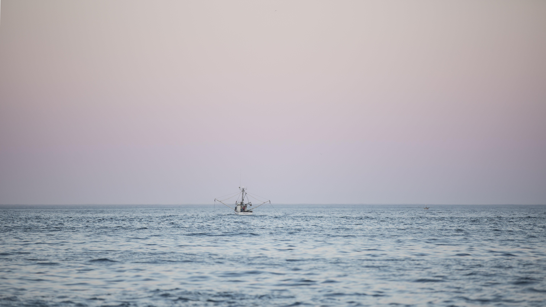 Δωρεάν στοκ φωτογραφιών με αλιευτικό σκάφος, βάρκα, θάλασσα, θαλασσογραφία
