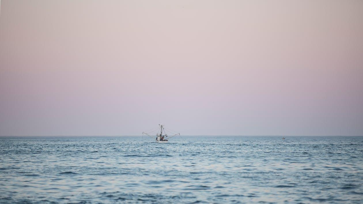 bateau, bateau de pêche, bord de mer