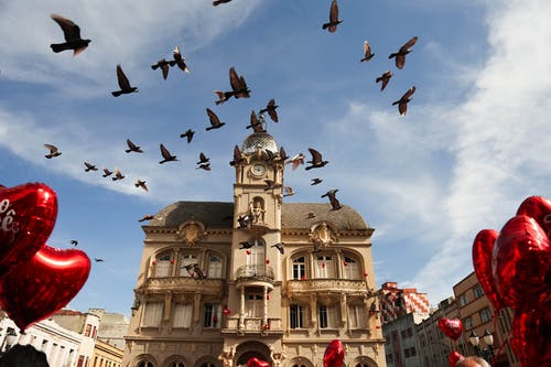Old house facade under flying birds in sky