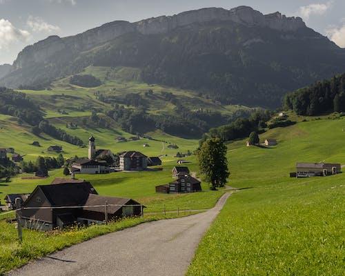 Gratis stockfoto met 4k achtergrond, 4k bureaublad, berg, gebied van gras
