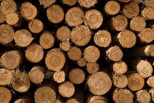 Backdrop of heap of brown firewood with rough surface and ornamental circles on cut in daylight