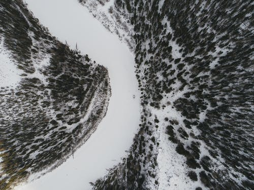 Car riding on frozen river among firs
