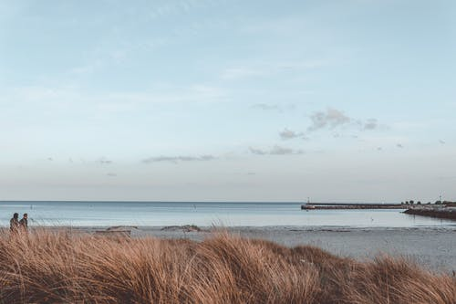 Picturesque view of sea with horizon line near sandy shore and dry grass under cloudy sky